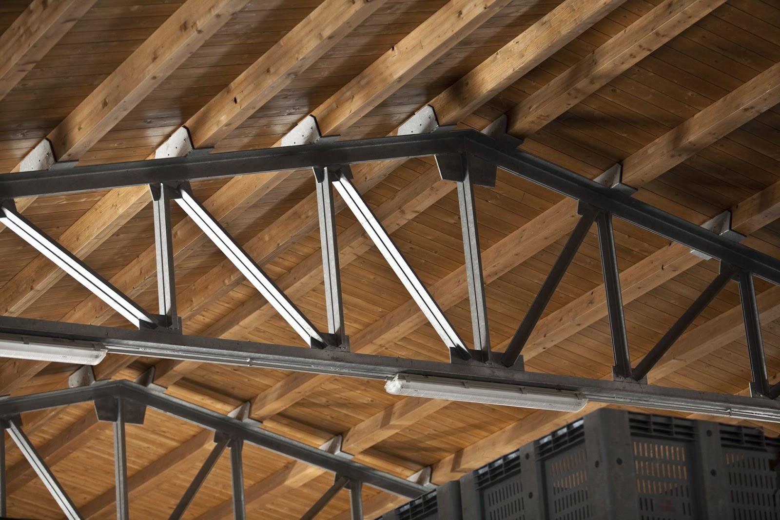 La capriata elementi costitutivi e tipologie edilizia - Struttura in ferro per casa ...