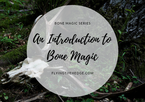 Bone Magic Series: Introduction