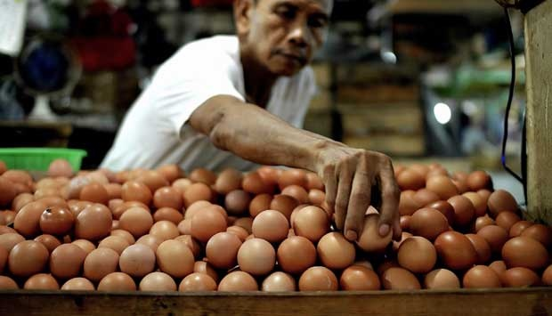 Harga Telur Naik, Mendag: Ada Beberapa Ayam Peternak Sakit