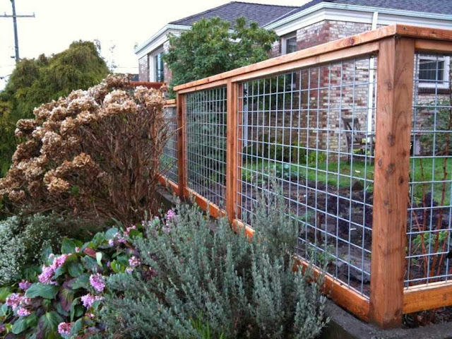 Fence Designs Wood and Wire picture