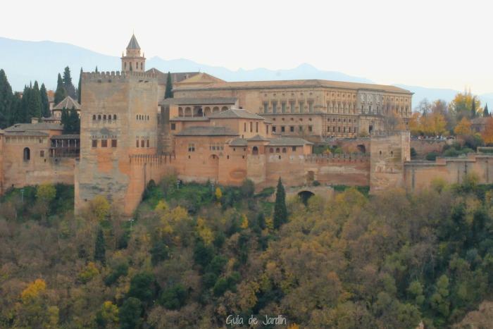 Palacio de carlos v en la alhambra de granada guia de jardin for Ciudad jardin granada