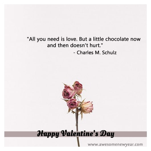 Short Valentines Day Quotes & Sayings