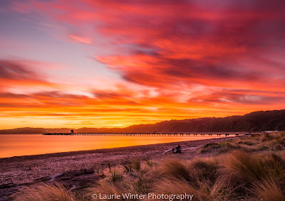 Petone Beach Wellington Harbour Sunset NZ
