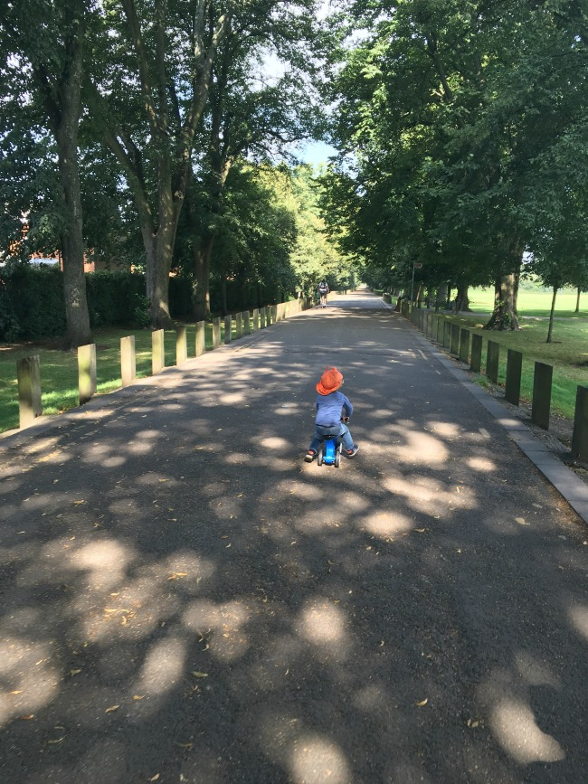 Bute-Park-Pontcanna-fields-a-toddler-on-his-bike-