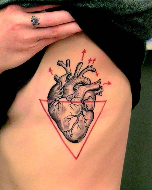 anatomik kalp dövmesi anatomical heart tattoo