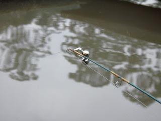 Dica na Pesca, Melhor Lua para Pesca, Primavera,