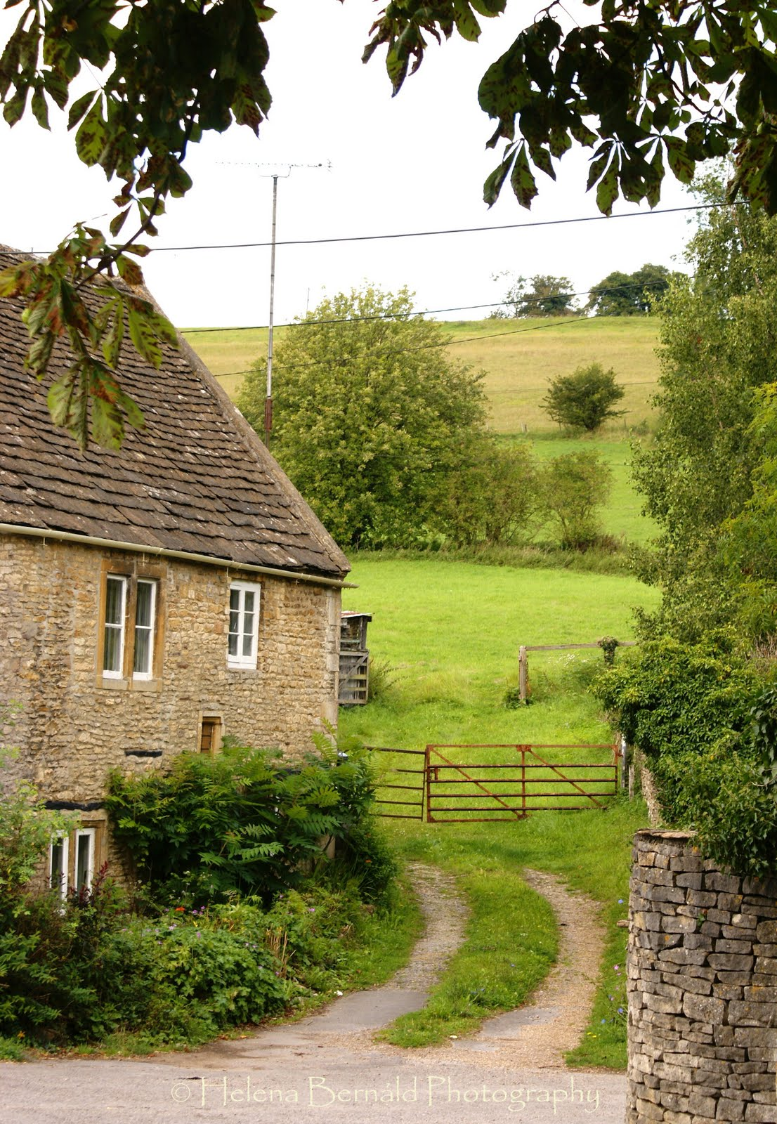 countryside home lien brilleslijper - HD1106×1600