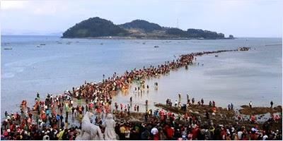 เทศกาลน้ำทะเลแยก (Jindo Sea Parting Festival)