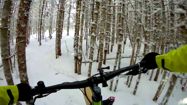 Very Tight Trail Trees