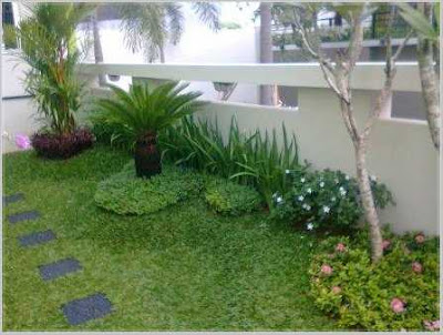 taman belakang rumah minimalis terkini