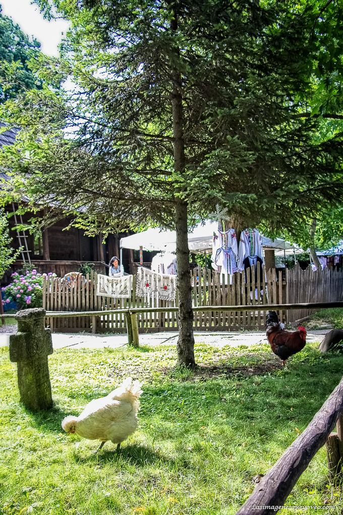 Museo Satalui o Museo de la Aldea, de Bucarest, Rumanía de casas rurales antiguas