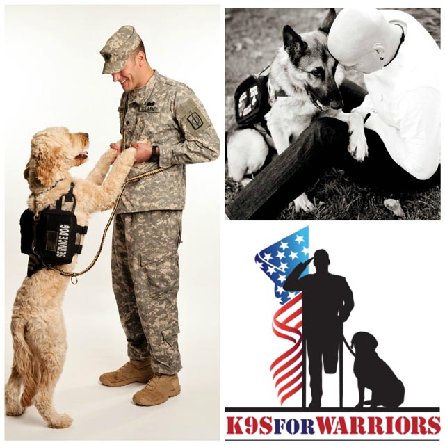 support k9s for warriors nonprofit organization