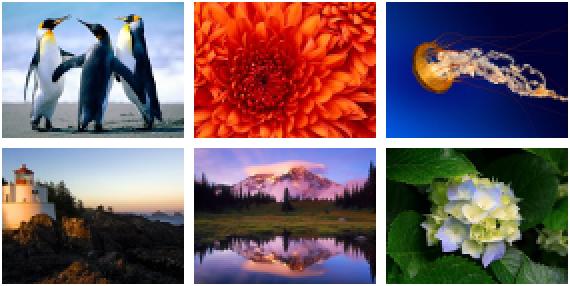 Cara Membuat Galeri Foto Di Postingan Blog Cara Membuat Galeri Foto Di Postingan Blog