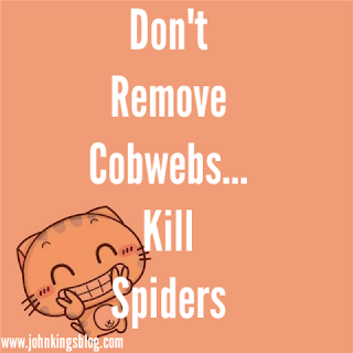 text of 'stop removing cobwebs, kill spiders'