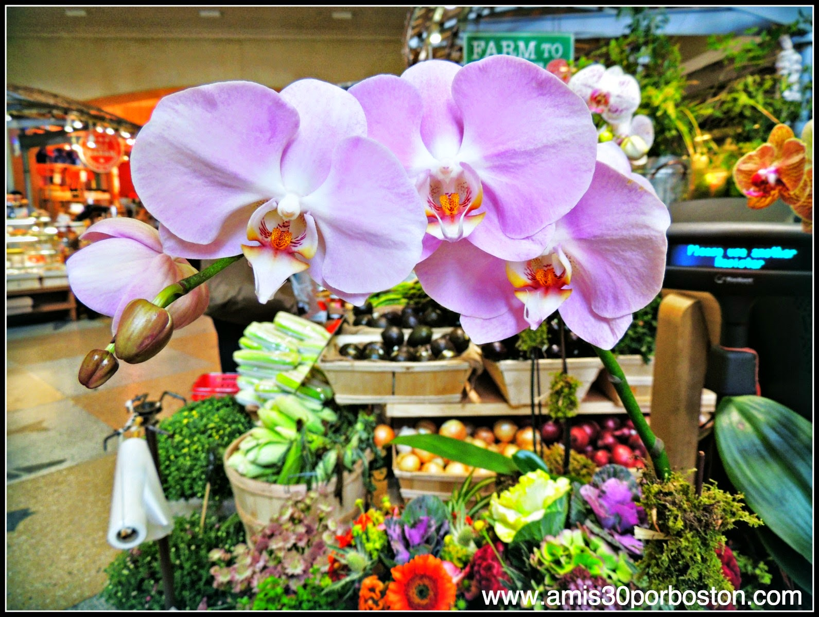 Grand Central Terminal de Nueva York: Flores del Gran Central Market
