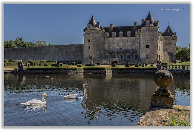 Charente - Maritime - Château de la Roche Courbon