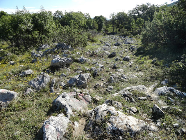 Sections of Roman Road found in ancient Dalmatia