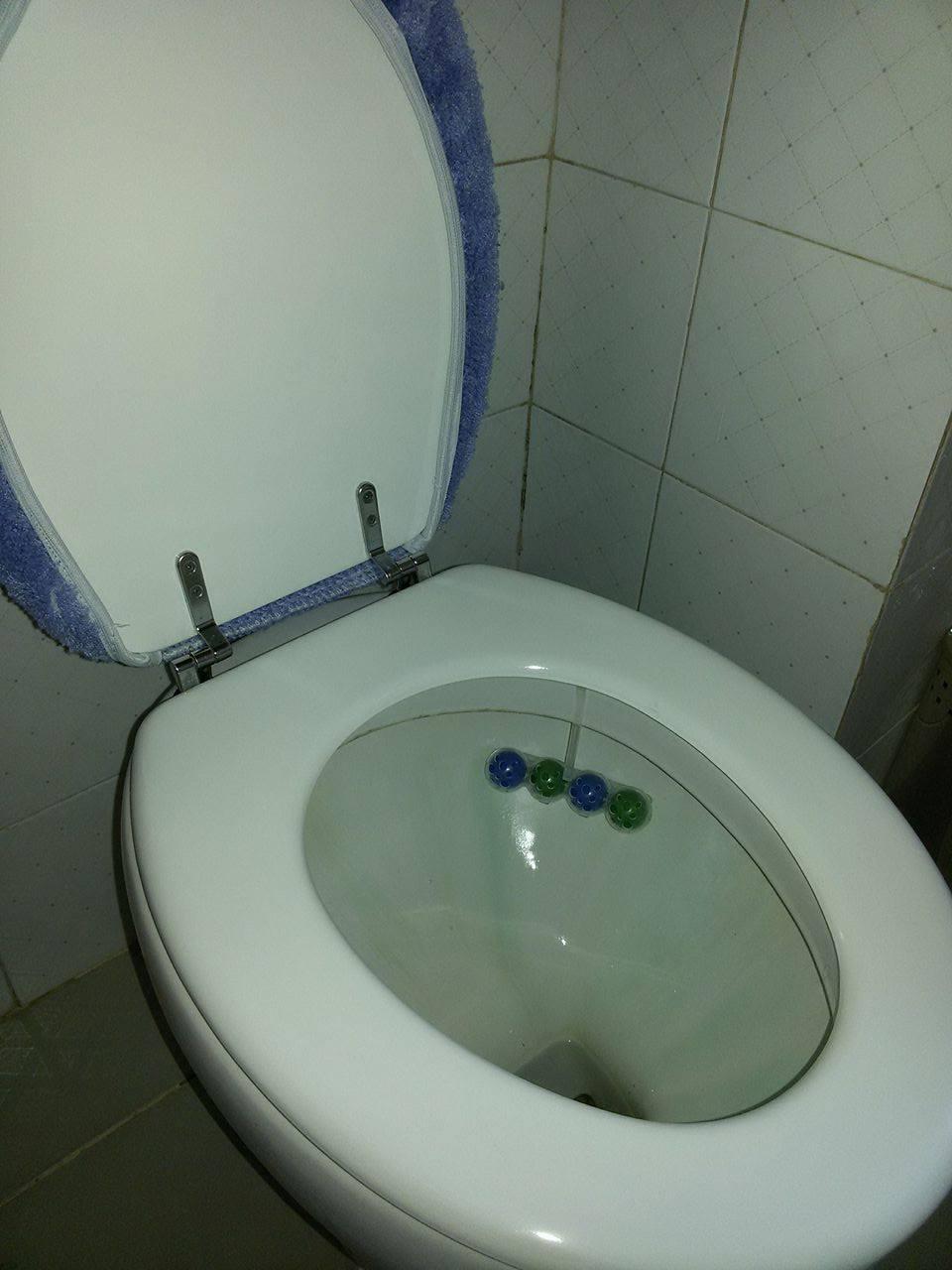 Soffice come una nuvola bref wc la prova prodotto - Mia suocera in bagno ...