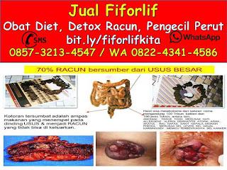 0822-4341-4586 (WA), Jual Fiforlif Porong Sidoarjo