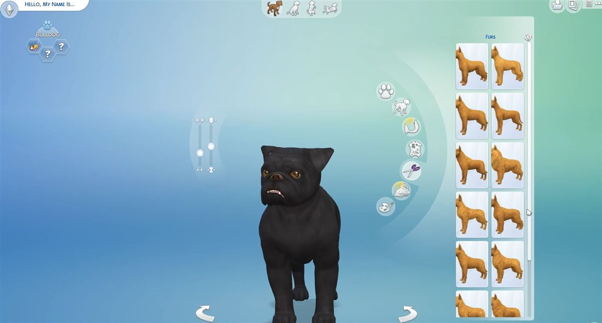 Sims  Cats And Dogs Origing Is Currently Not Running