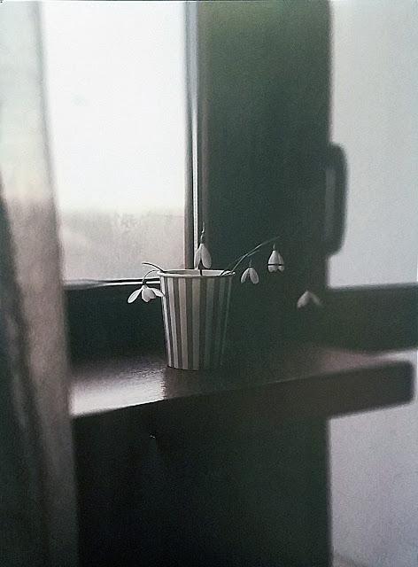 """межрегиональная выставка фотонатюрморта """"Весь мир - театр. Внимание на экспериментальную сцену!"""":  Лилия Родионова - Подснежники"""
