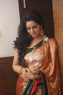 Udaya Bhanu lookssizzling in a Saree Choli at Gautam Nanda music launchi ~ Exclusive Celebrities Galleries 093.JPG