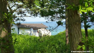 Wald und Ostsee