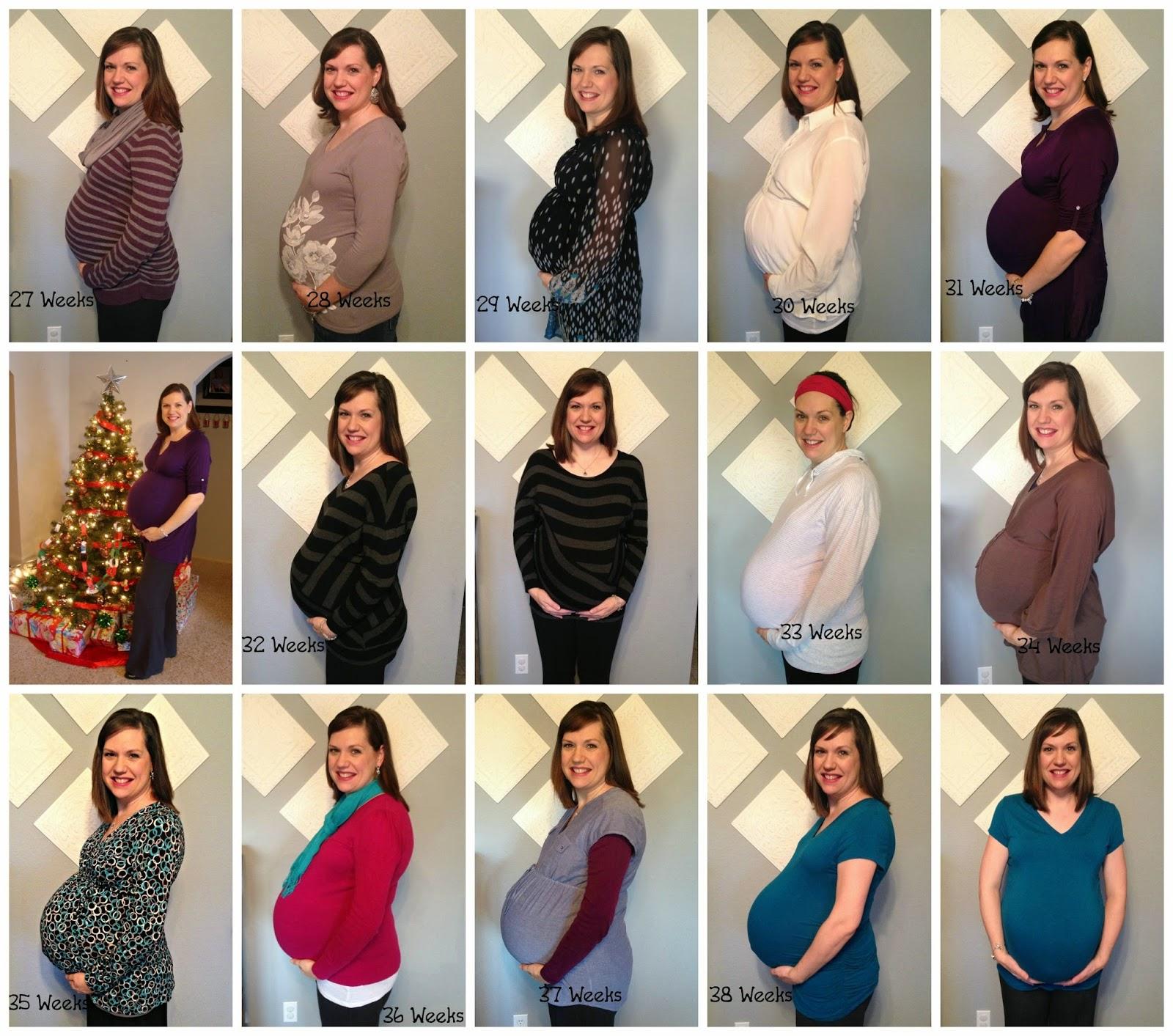 Plus Size Pregnant Belly Progression | www.galleryhip.com ...