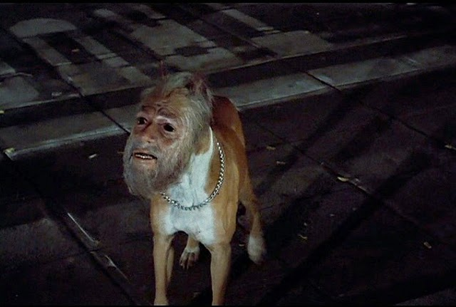 Dog with a man's head from Invasion Of The Body Snatchers (1978)