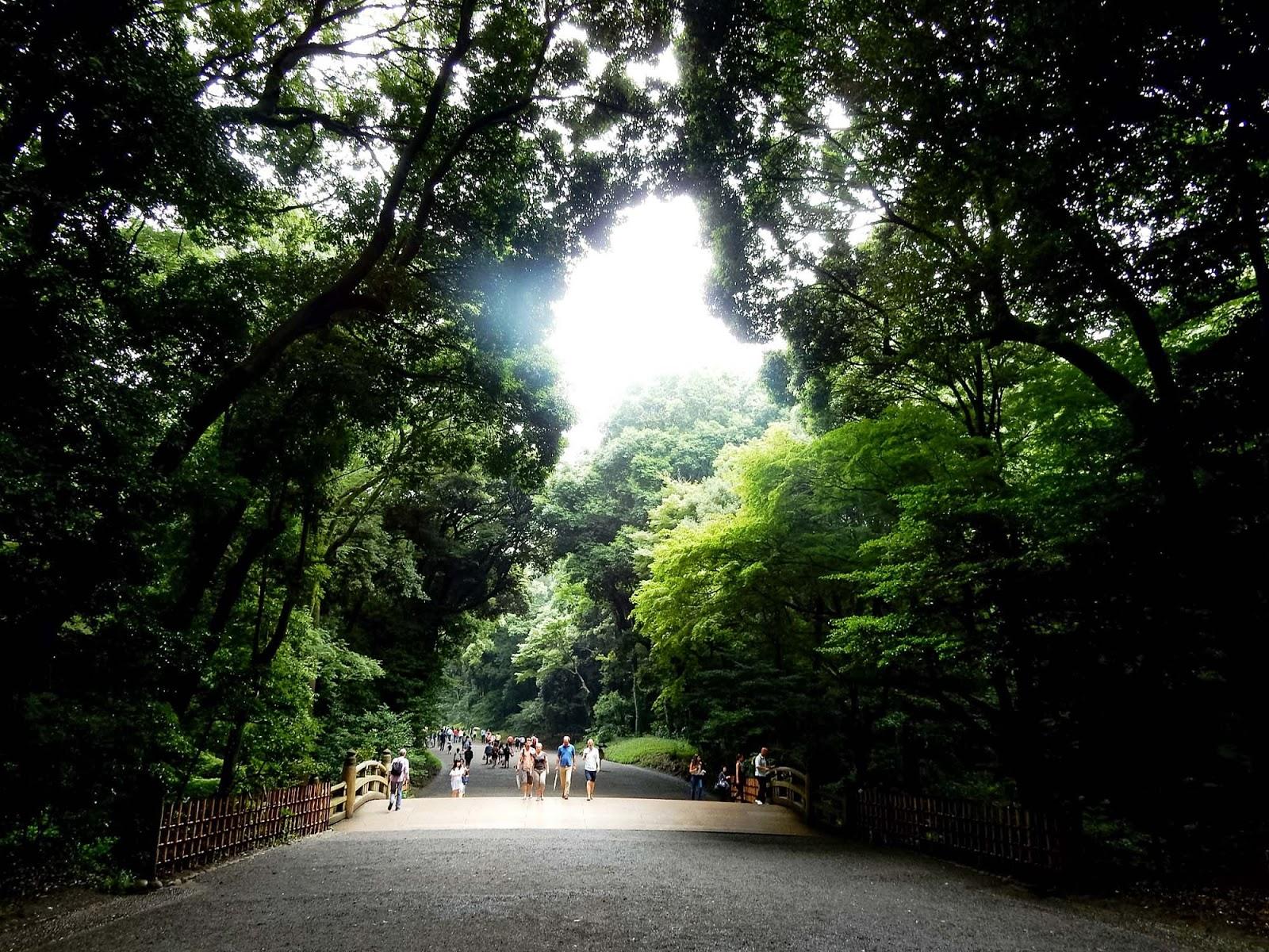 yoyoji park