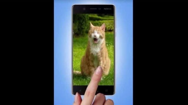 nokia-8-appears-video-hmd-day-cats