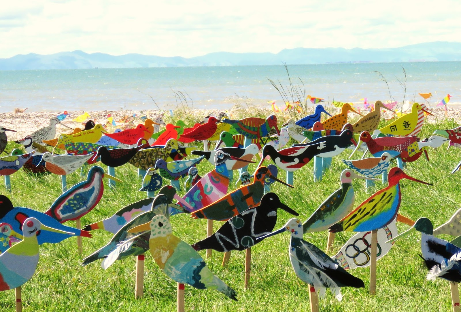Image result for the flock miranda shorebird centre