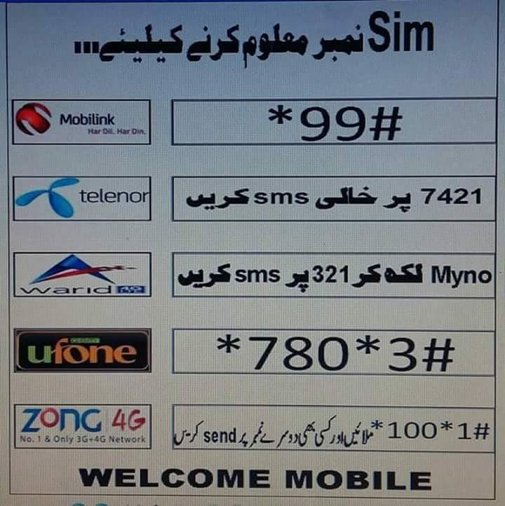 All Education Information: How to find SIM Number Zong