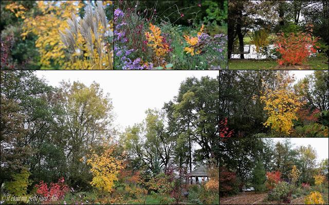 jardin en automne feuillages 2016