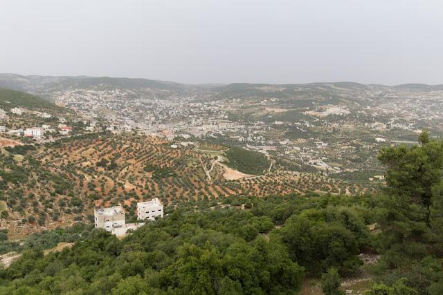 Camino hacia el Castillo de Ajlun