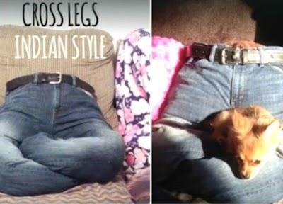 Cama para mascotas con nuestros pantalones
