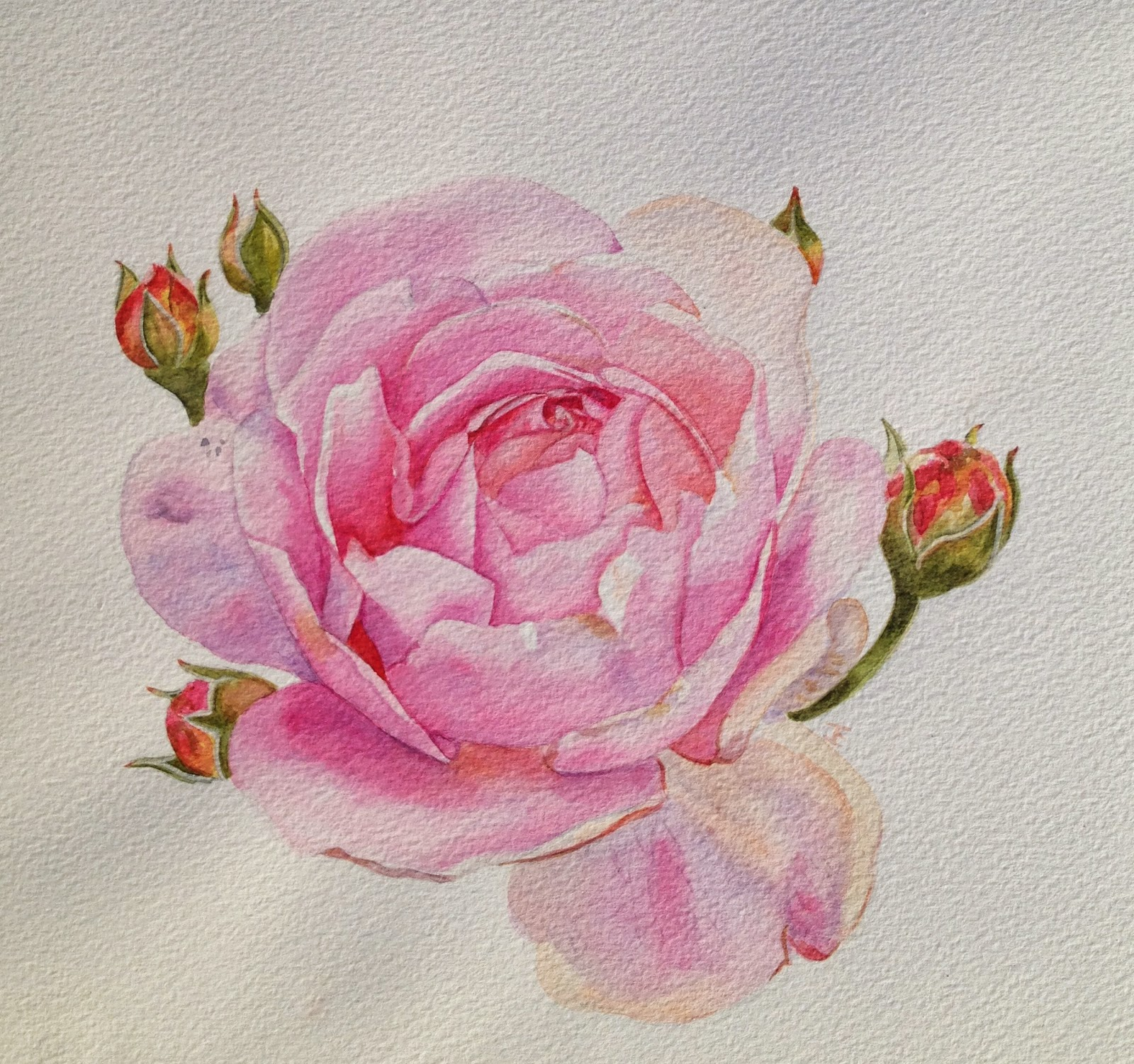 Schilderijen van orchidee n en andere botanische werken for Schilderijen van bloemen