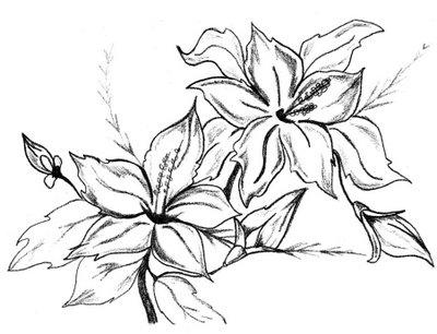 Imagens Para Celular Desenhos De Flores Para Imprimir E Colorir