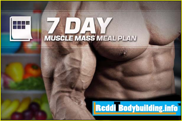 The Importance of Bodybuilding Diet Plans Bodybuilding diet