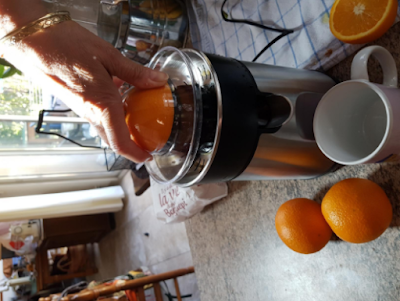 machine a presser les oranges