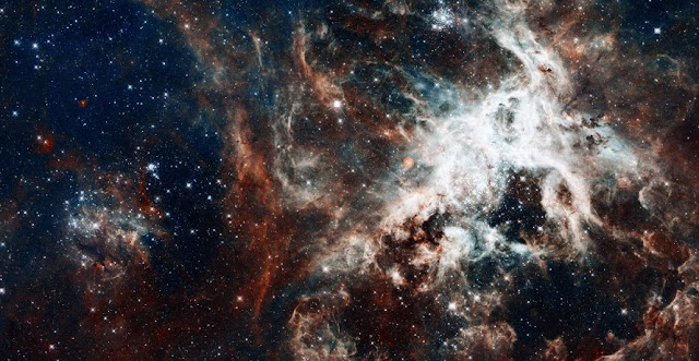 Astronomers observed nearly 1,000 massive stars in 30 Doradus, also known as the Tarantula nebula. Image credit: Shutterstock