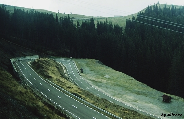 Transrarau-Bucovina-pareri