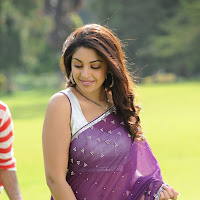 glorious Richa gangopadhyay in saree hot stills