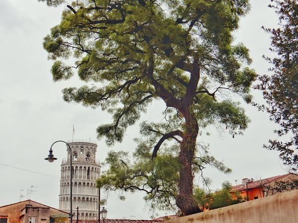 PISA | OUR ITALIAN ADVENTURE