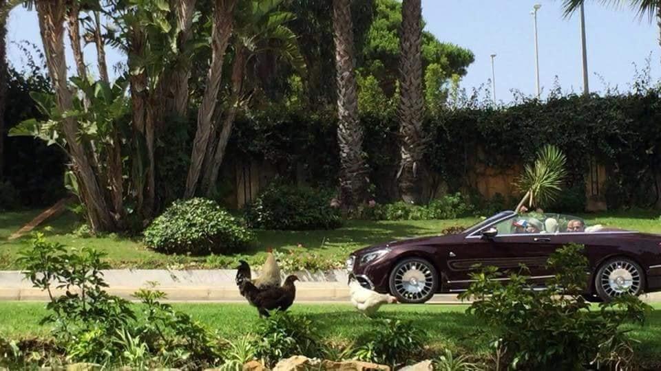 الملك يصطاد الغزلان في محمية بوزنيقة .. يتنقل يومياً من قصره بسلا لممارسة القنص !