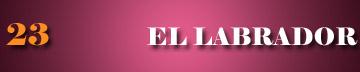 http://tarotstusecreto.blogspot.com.ar/2015/06/el-labrador-arcano-menor-n-23-tarot.html
