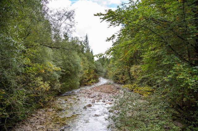 Rundweg Röthelmoos Almen – Weitsee  Wandern Ruhpolding  Wanderung Chiemgau 03