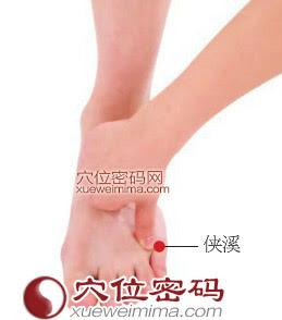 俠溪穴位 | 俠溪穴痛位置 - 穴道按摩經絡圖解 | Source:xueweitu.iiyun.com