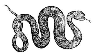 snake animal download reptile clip art