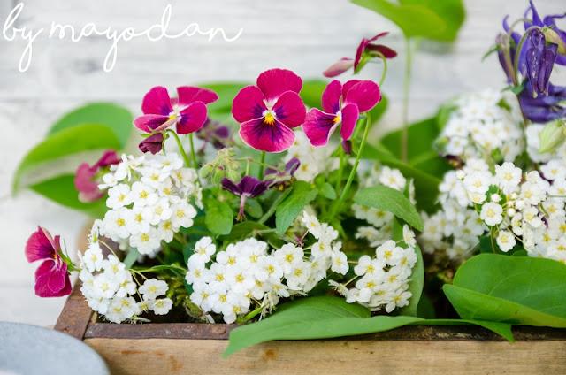 Blumendeko